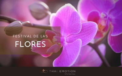 Pon una orquídea en tu vida. El festival de las flores