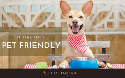 Restaurante pet friendly: trae a tu mascota cuando vengas a The Restaurant